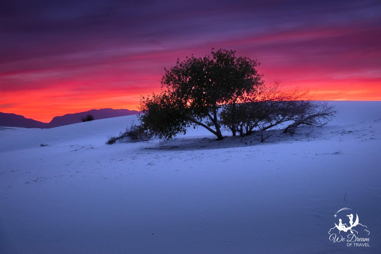 Red horizon over a lone tree in White Sands NP.