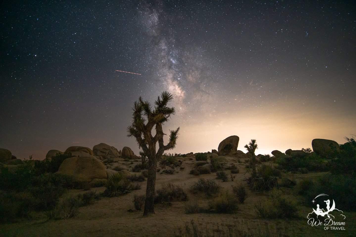 The Milky Way Galactic Core cascades beside a Joshua Tree as a redeye flight blows through the frame.