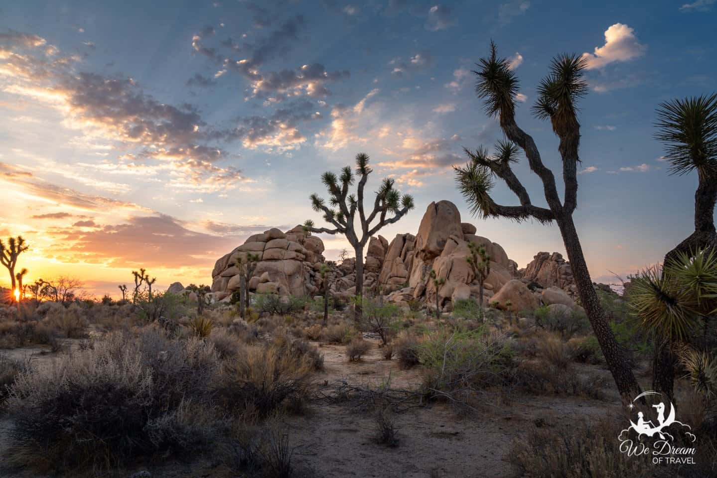 The colors of dusk decorate the sky in this sunset picture of Joshua Trees in Hidden Valley.