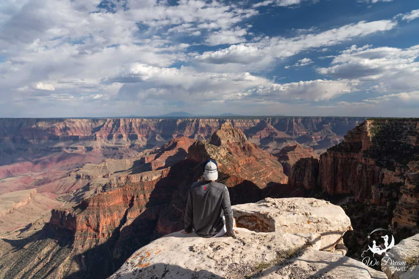 Staring out over the Grand Canyon landscape from Walhalla Overlook.