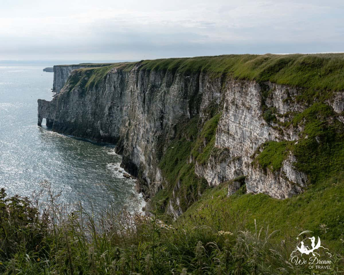 View of the chalk cliffs at RSPB Bempton from New Roll Up Viewpoint
