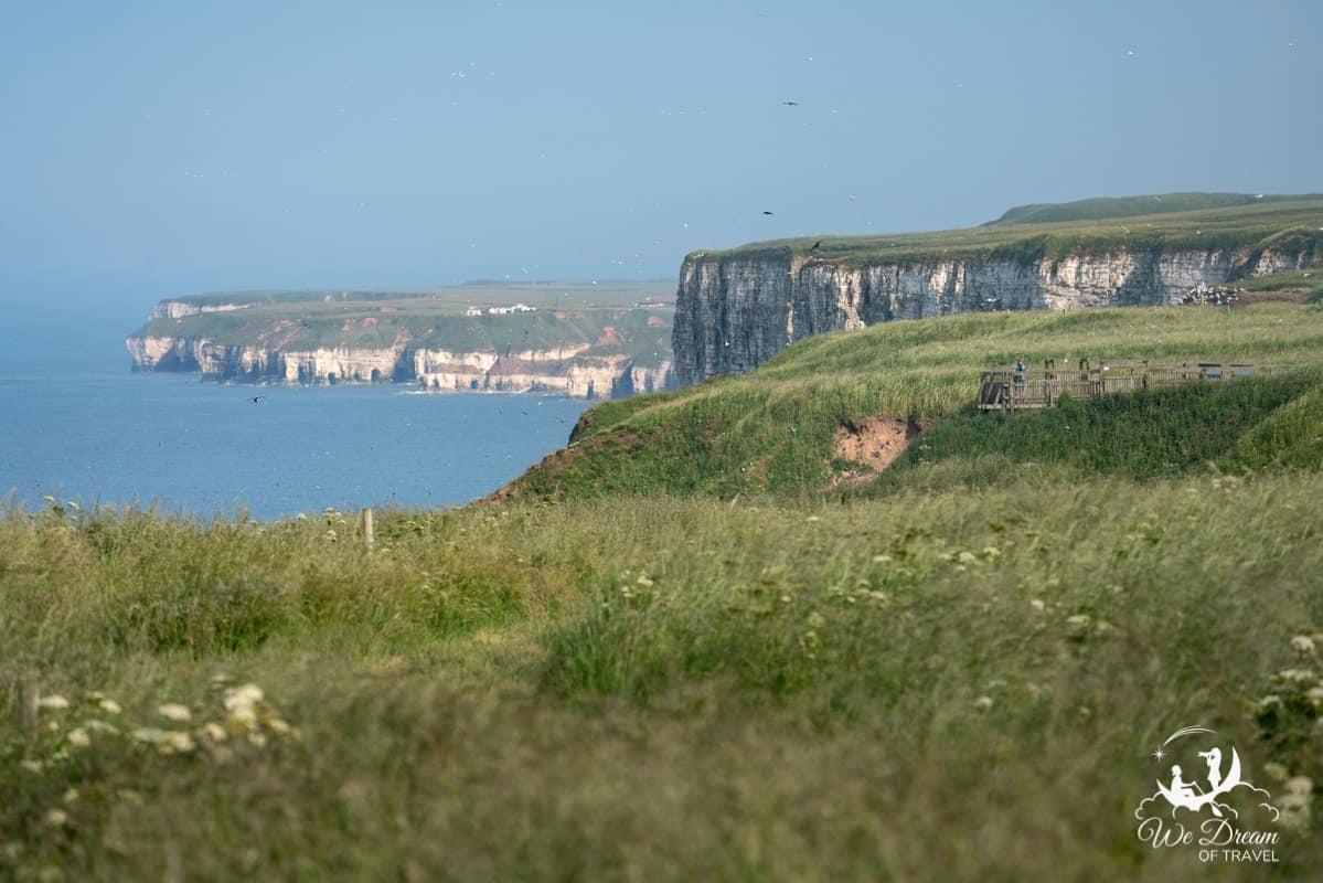 RSPB Bempton Cliffs in Yorkshire