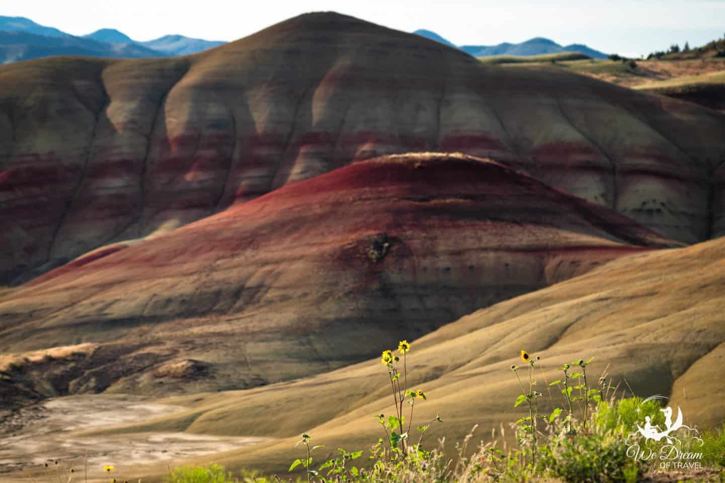 Wildflowers are a great reason to visit the Painted Hills of Oregon in the spring.