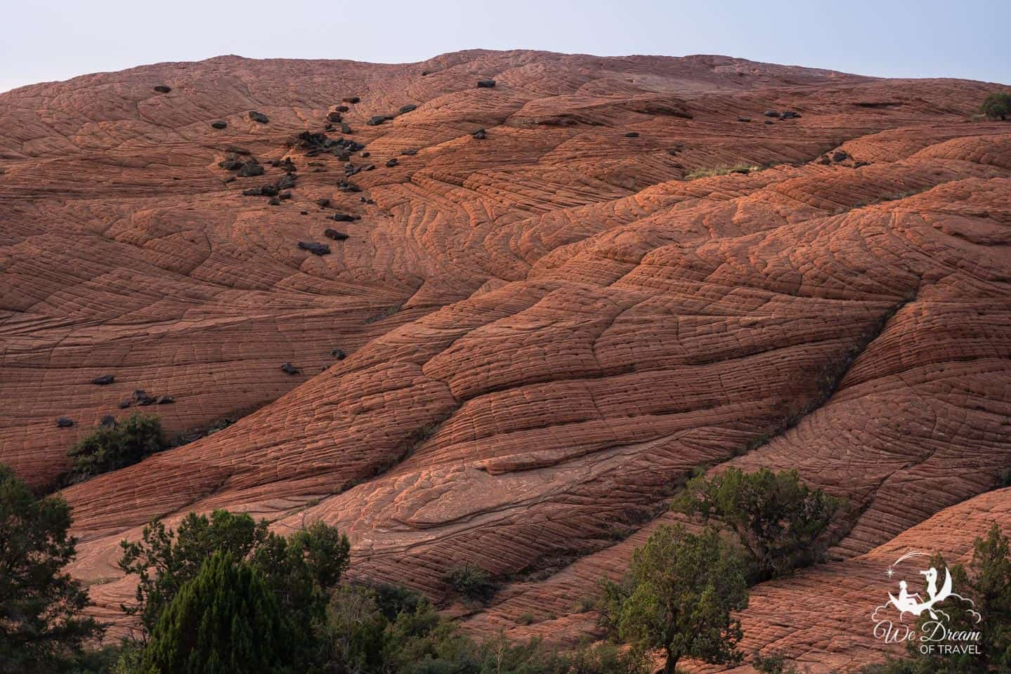Petrified Sand Dunes create swirling rock patterns at Snow Canyon State Park