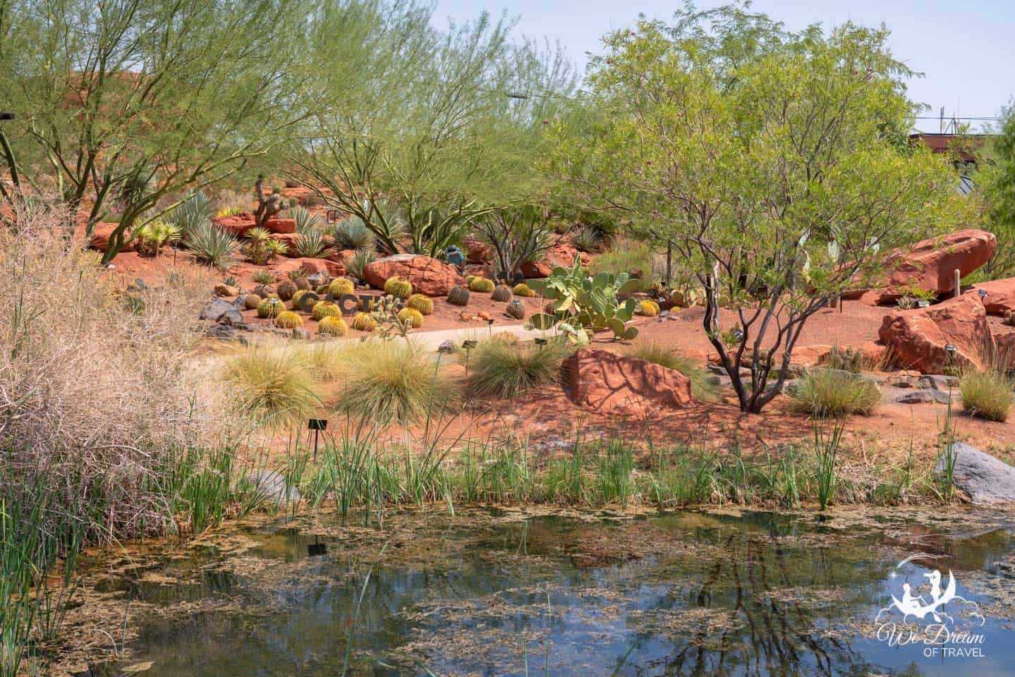 Landscape photography of the Red Hills Desert Garden in St George, UT.