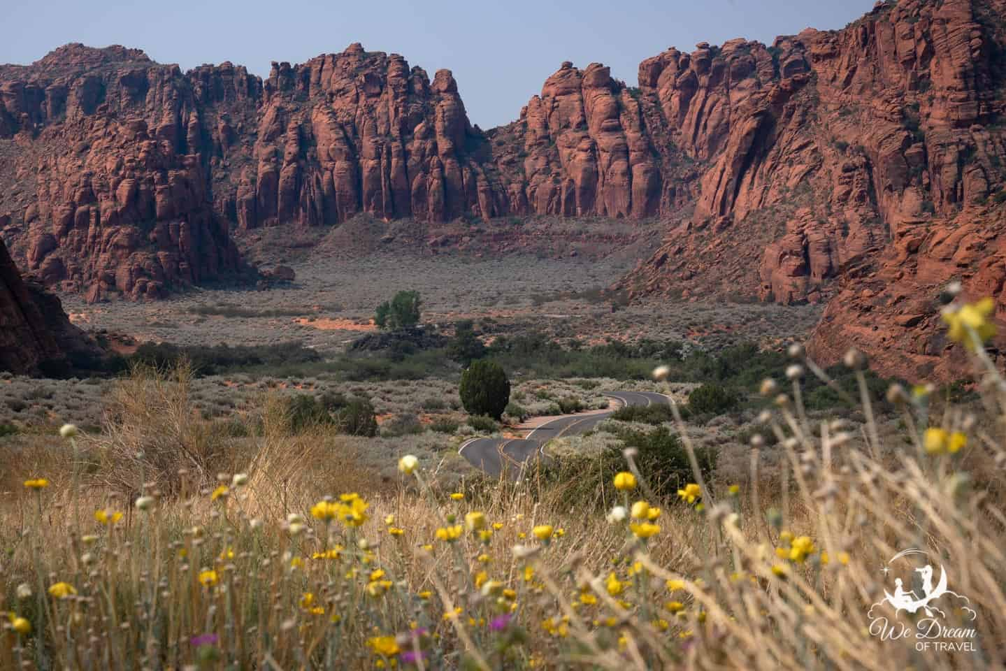 The view from the campground at Snow Canyon: A snaking road leading to red cliffs with yellow and purple wildflowers in the foreground