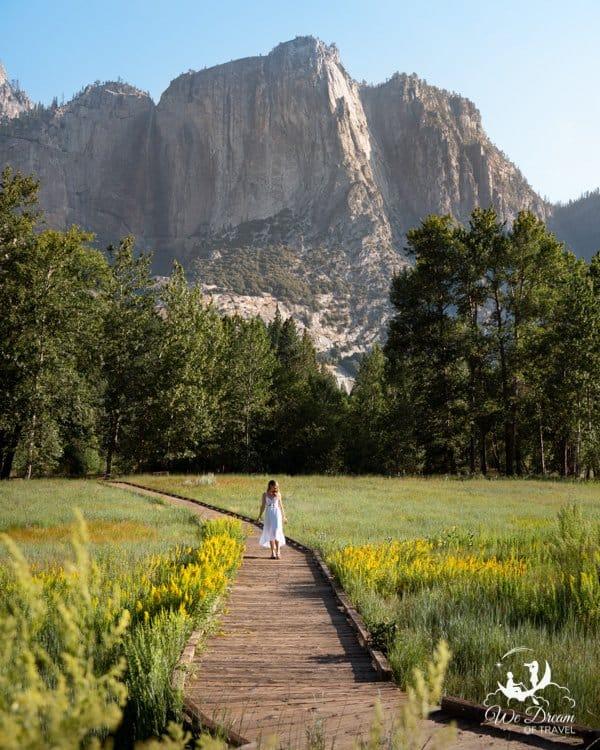 Sophie meanders through the meadow boardwalk along the Yosemite Valley scenic loop.