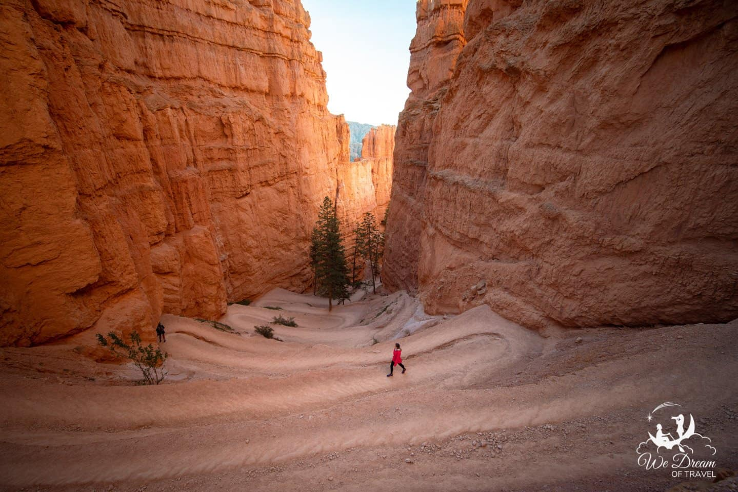Wandering the twists and turns of the Navajo Loop in Bryce Canyon National Park.