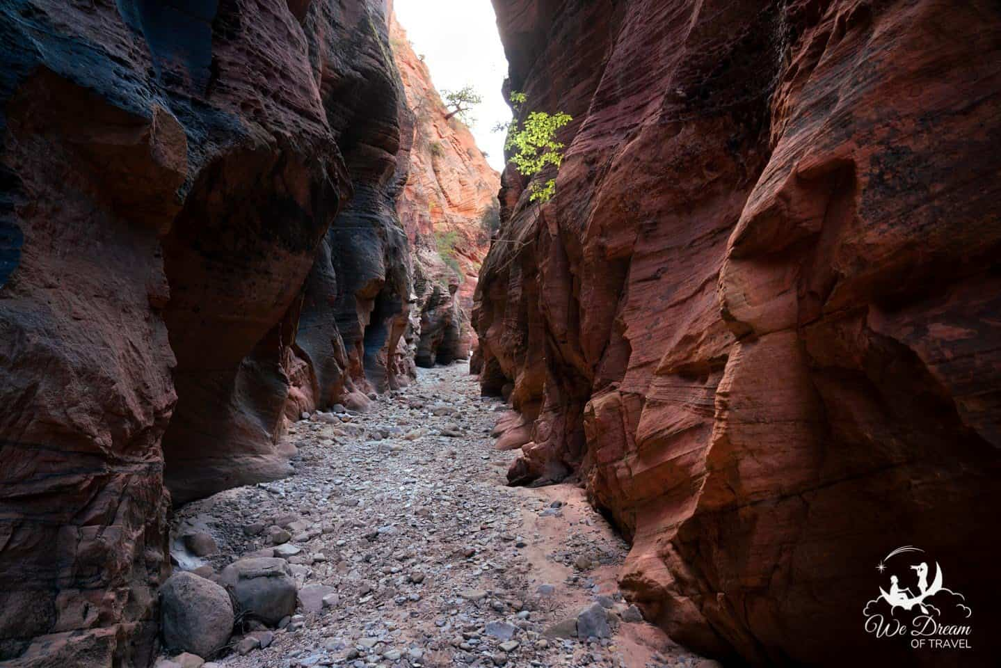 Time permitting, be sure to wander the Pine Creek wash on your way to Bryce Canyon from Zion to discover a plethora of hidden slot canyons.