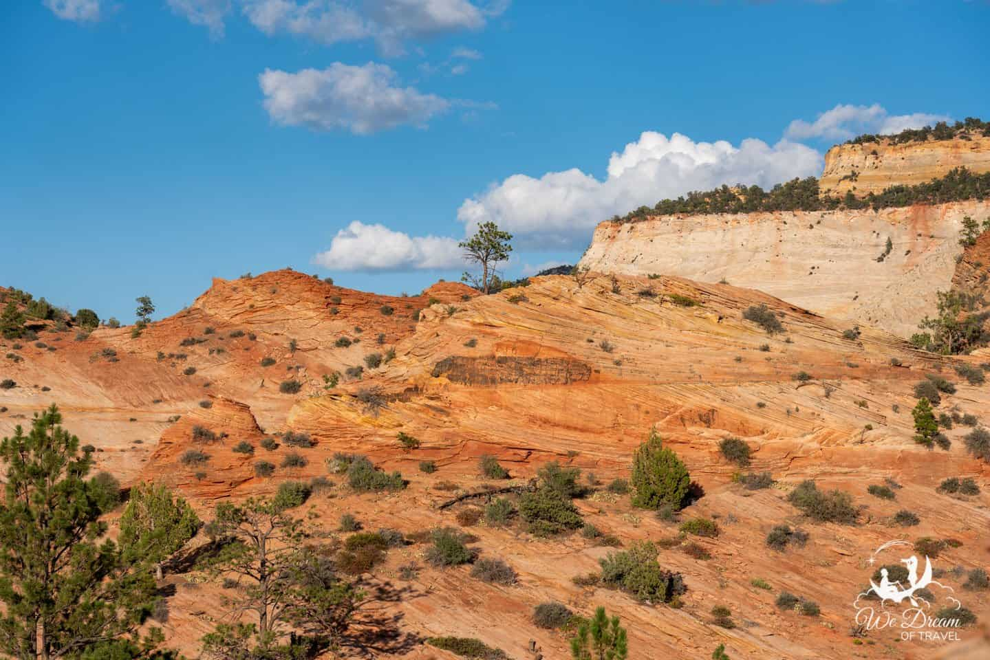 The orange-rock landscapes of the American Southwest are a treasure to behold.